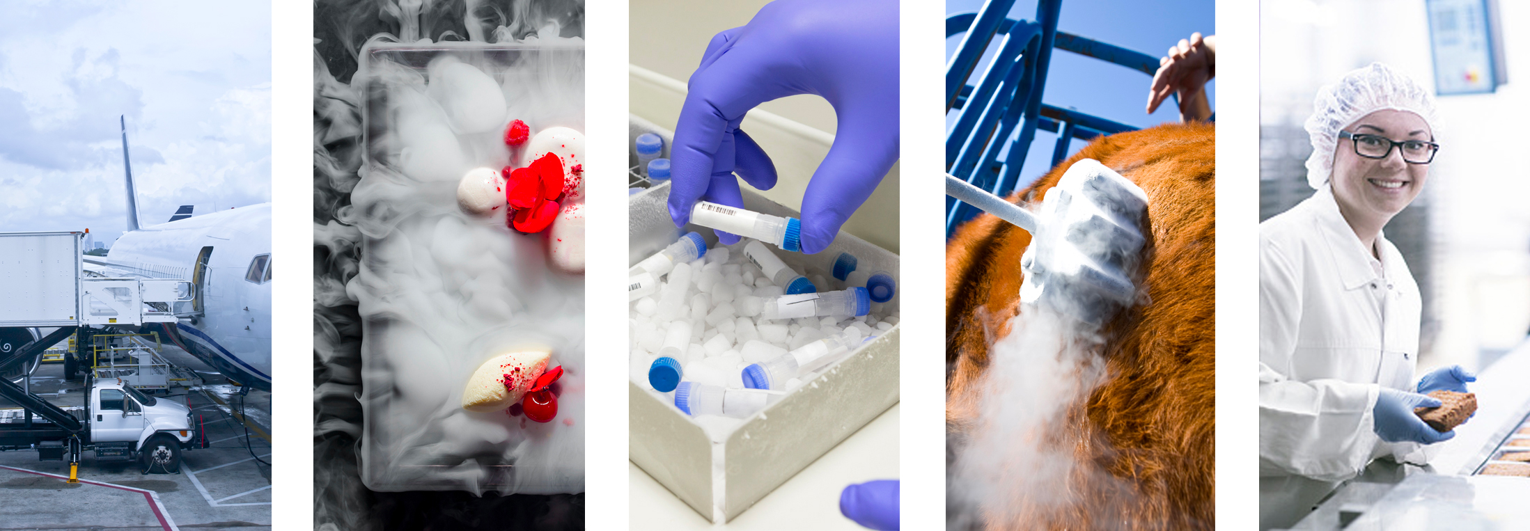 Images of Dry Ice Applications